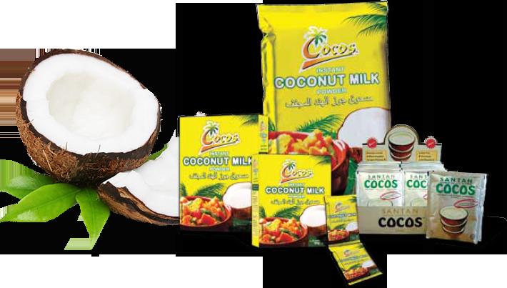 coconut-powder-product
