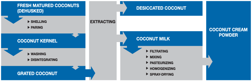 manufacturing-process-of-cocos